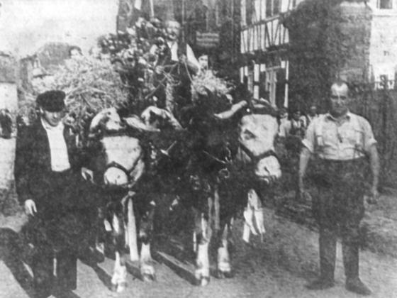 Königstädten Erntedankfest 1935