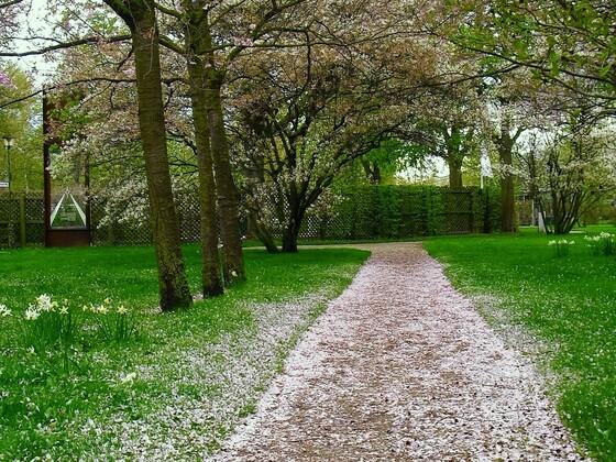 Blütenweg