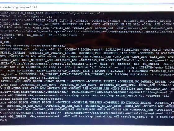 [Kein Tutorial] Kompilation von Nginx mit OpenSSL 1.1.1 für NGX_Pagespeed/TLS 1.3