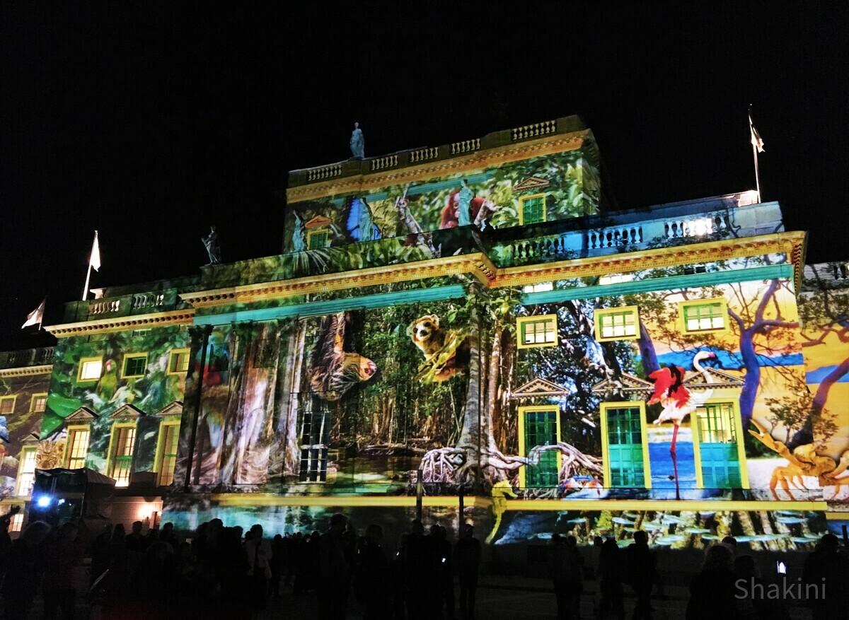 Festival of Lights - Humbold Universität