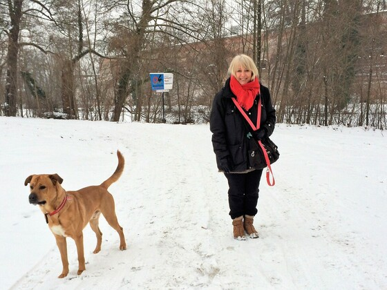 Zitadelle Spandau - Samson und der Schnee