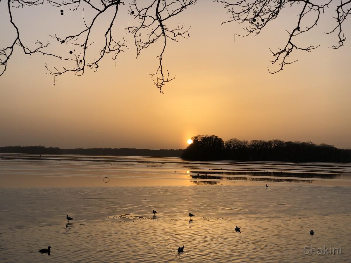 Wunderschöner Sonnenuntergang am Tegeler See