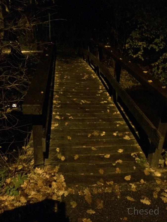 Herbstlichter - Nauheim - Autumn Lights - 2013 - Schwarzbachbrücke