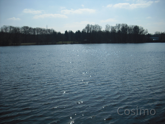 Hegbachsee Nauheim - Niederwaldsee Gross-Gerau im April 2013