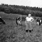 Meine Mutter Krystyna bei der Zwangsarbeit - II. Weltkrieg