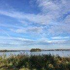 Blick von der Pfaueninsel auf die Havel