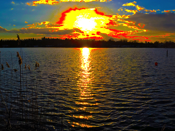 Scharfe Lanke Berlin Sonnenfeuer Sunset Panorama