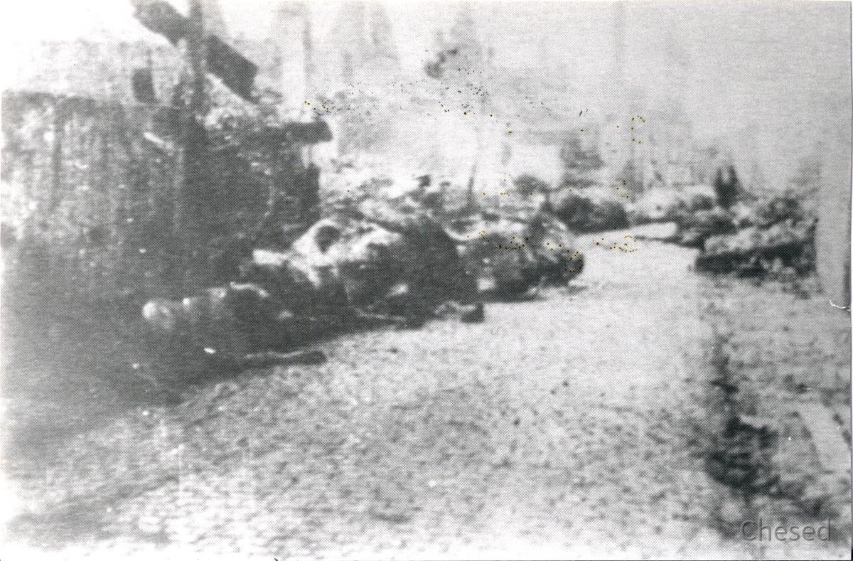 Rüsselsheim-Königstädten - Obergasse 13.8.1944 - Verwesende Tierkadaver