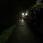 Herbstlichter - Nauheim - Autumn Lights - 2013 - Entenstraße