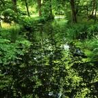 Teichgraben im Schlosspark Charlottenburg