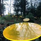 Gelbe, runde Namenstafel