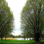 Frühlingserwachen im Britzer Garten