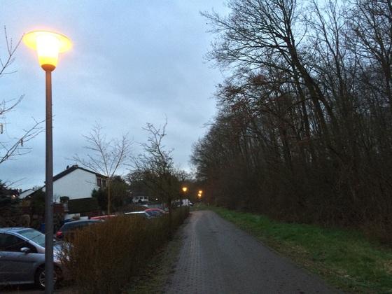 Straßenlaternen Nauheim - Im Teich