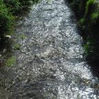 Fluss Pol in Polperro