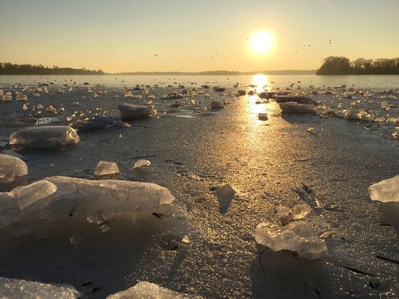 Icy Winter Sun - Tegeler See - Berlin - Germany