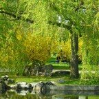 Marzahner Gärten