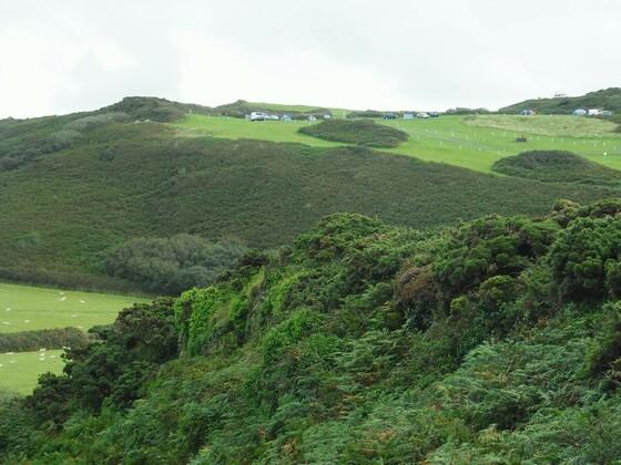 Wunderschöne grüne Landschaft - Wollacombe