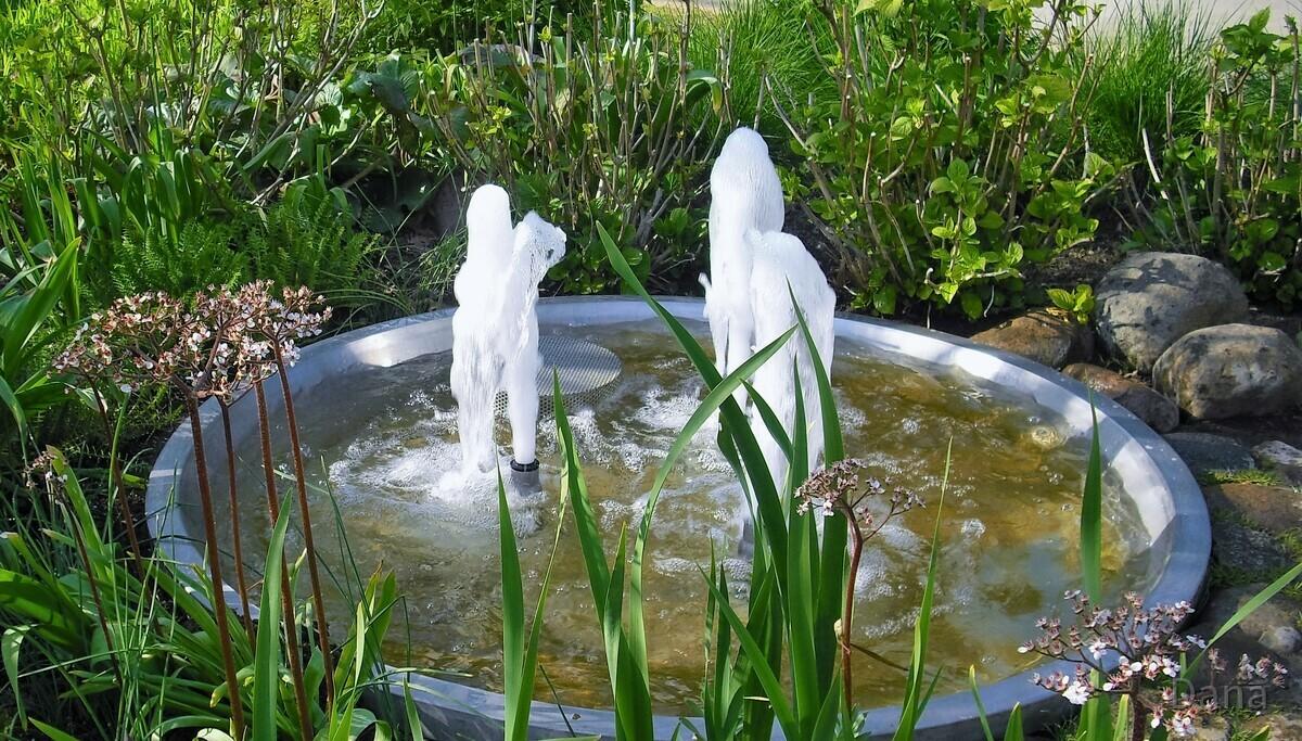 Wasserspiele - Marzahner Erholungs Park