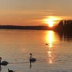 Sonnenuntergang Tegeler See