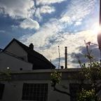 Sonnenschein am Sonntag im Garten