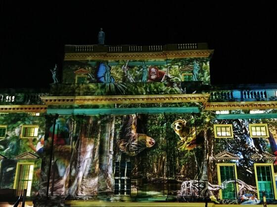 Humbold Universität - Festival of Lights 2019