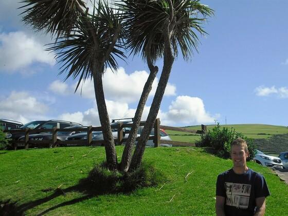 Wunderschöner Palmenstrand -Woolacombe