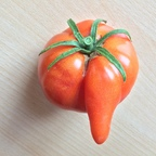 Dukemasters Penis-Tomate