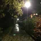 Herbstlichter - Nauheim - Autumn Lights - 2013 - Adolf-Menzel-Weg